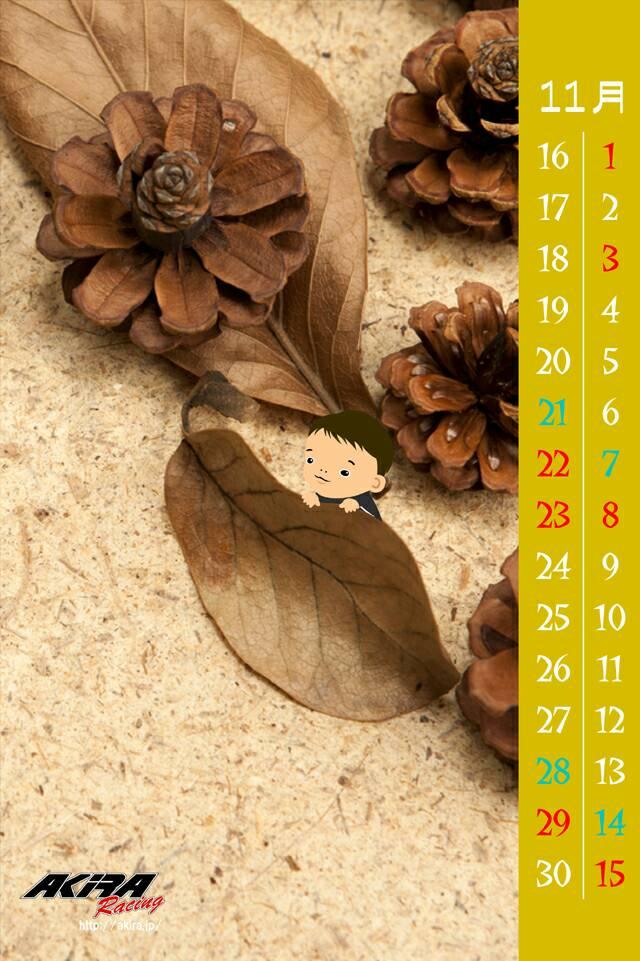 カレンダー201511